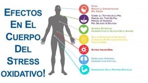 efectos del estres oxidativo